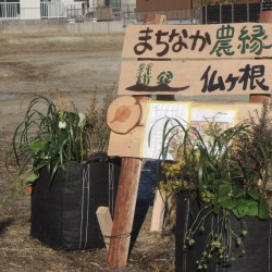 Machinaka-Nouen