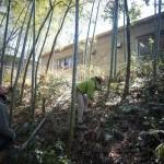 会場づくりのための竹を切る